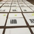 """""""After Life"""" manuscript, in progress"""